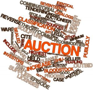 Auctioneer Terms You'll Want to Know