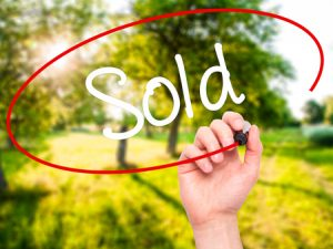 Someone Bought Land through an Auction