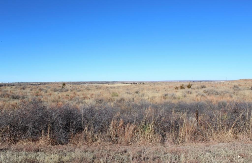 Land for Sale in Woodward Oklahoma