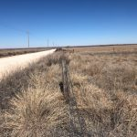 Ellis County Land Auction